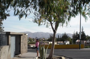 Arequipa-hill